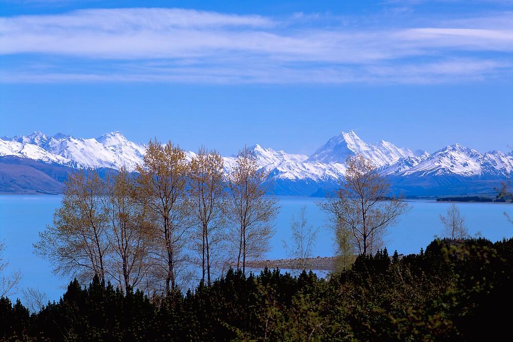 Mt Cook and Lake Pukaki, New Zealand by David Jamrozik