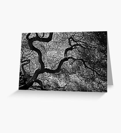 Wild Dreams Greeting Card