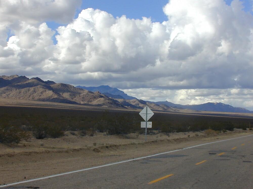 Ivanpah Valley, Mojave Desert, California by Chris Clarke