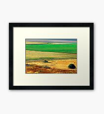 Wheat field, Negev desert, Israel Framed Print