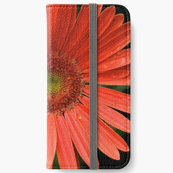 Gerbera Daisy iPhone Wallet