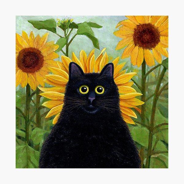 Dan de Lion with Sunflowers Photographic Print