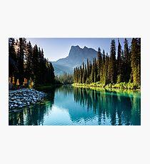 Emerald Sunshine Photographic Print
