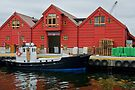 Fish Depot, Kristiansand, Norway by Gerda Grice