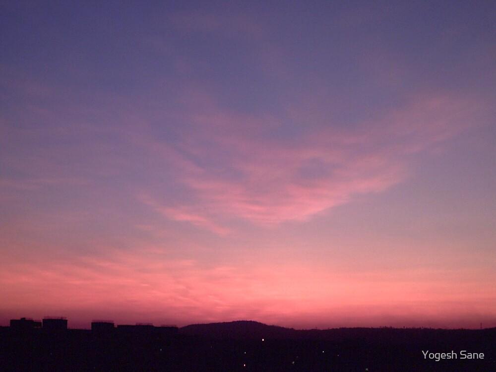 pink sky by Yogesh Sane