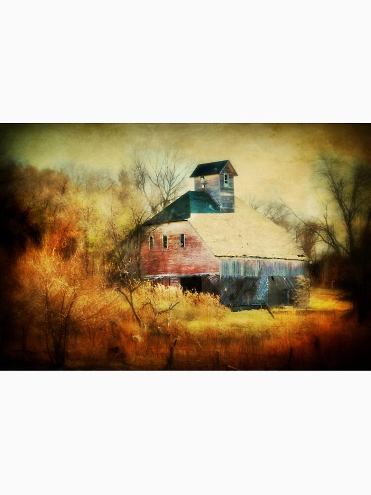Autumn Nebraska Barn by BarnArtandMore