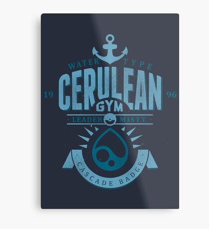 Cerulean Gym Metal Print