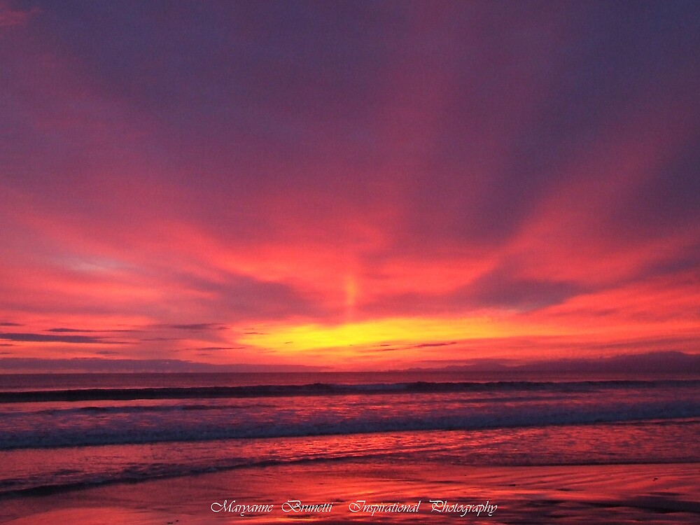 Venus Sunrise by Maryanne
