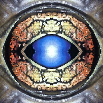 Abstract Frog Eye by Hopemartinart