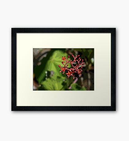 Tropical Flowers Framed Print