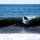 Go Surfer Boy, Go by Ashleigh Robb