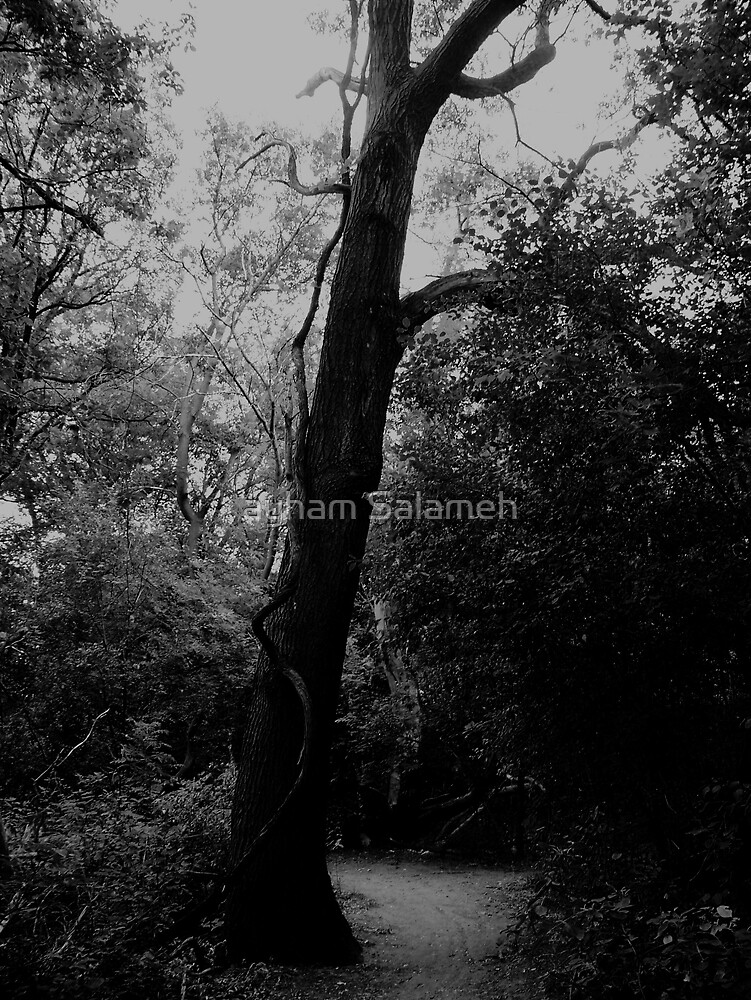 Scary Tree by ayham Salameh