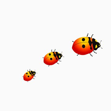 Ladybugs by popdesign
