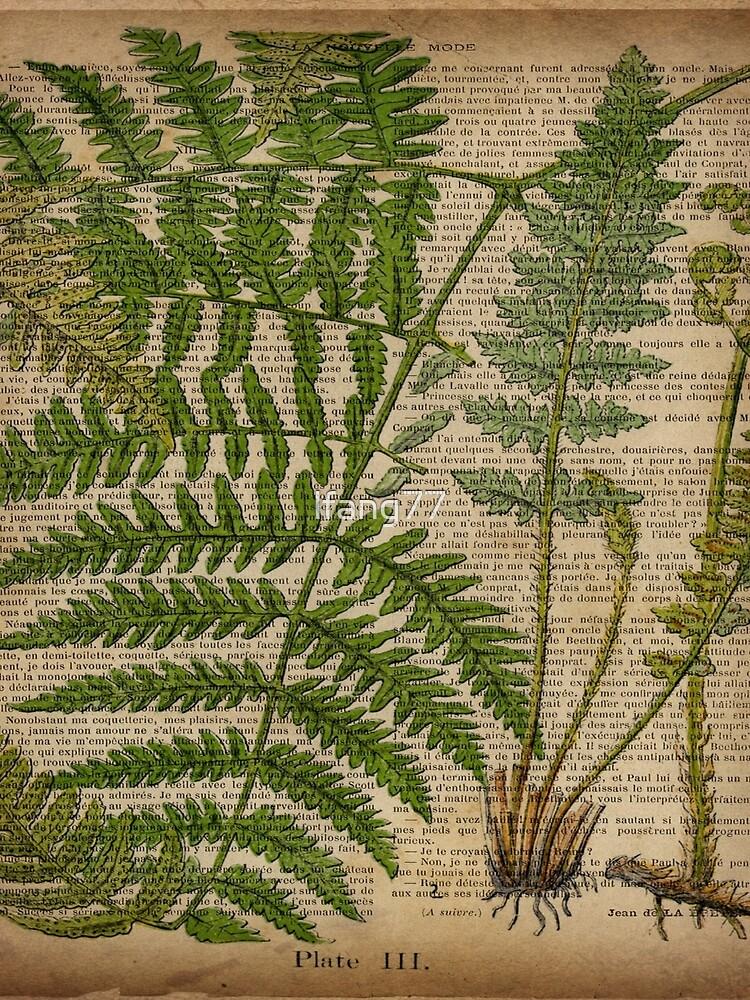 vintage foliage hipster botanical print fern leaves by lfang77