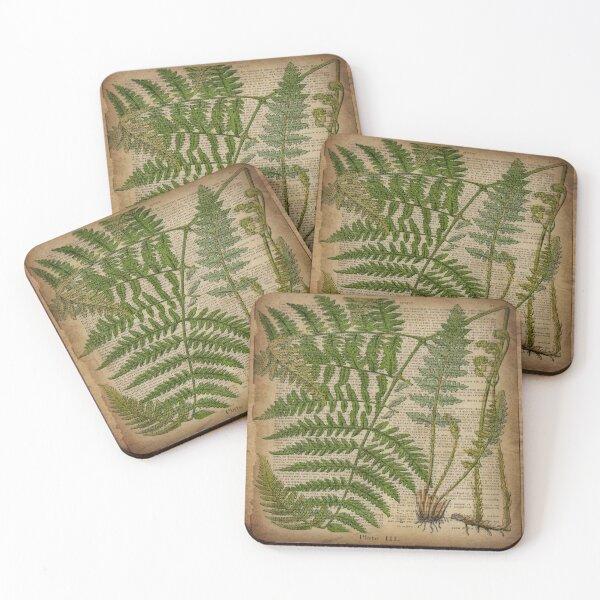 vintage foliage hipster botanical print fern leaves Coasters (Set of 4)