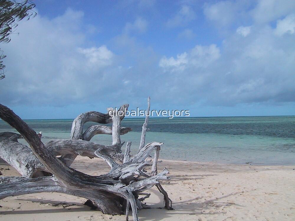 Green Island ~ Great Barrier Reef ~ QLD ~ Australia by globalsurveyors