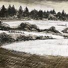 Port Fairy landscape by Roz McQuillan