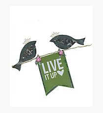 Live It Up - Blackbirds Photographic Print