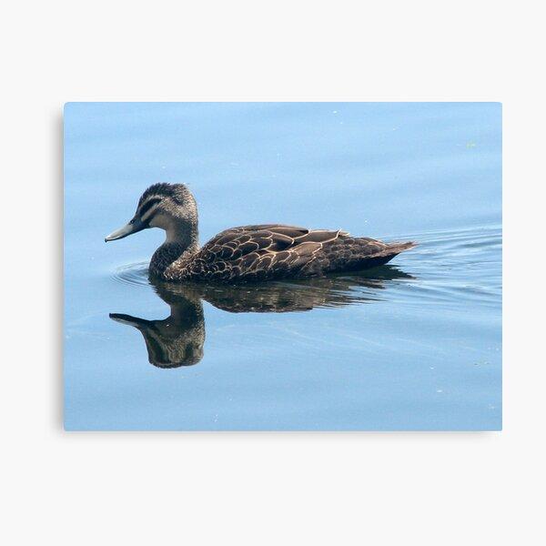 Double Duck Canvas Print