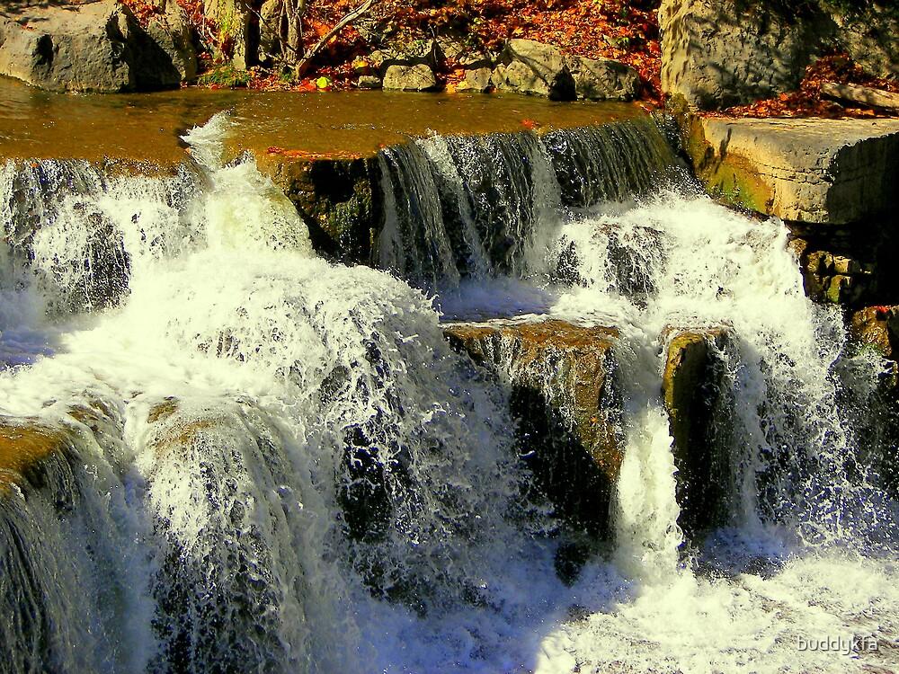 Cluster of Falls by buddykfa