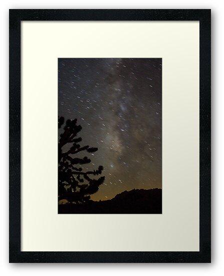 Mojave Night by Chris Clarke