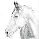 horse portrait by fitzpatrick