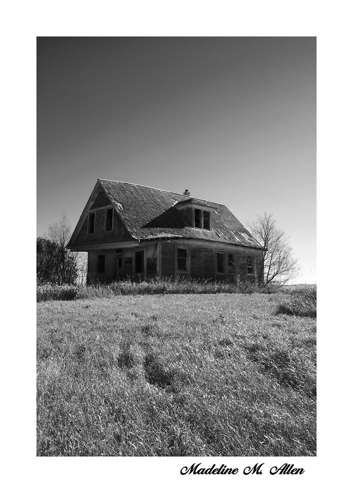 Abandoned House by Madeline M  Allen