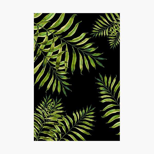 Tropical Night - Greenery On Black Photographic Print