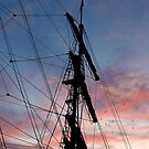 Tall Ship At Sunset -  Auckland Harbor by Alex Preiss