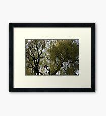 Annecy Framed Print