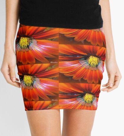 Spicy! Mini Skirt