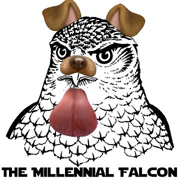 The Millenial Falcon by Rob0894