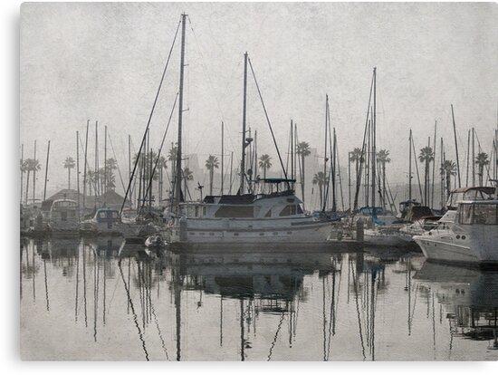 Fog in the marina by Celeste Mookherjee