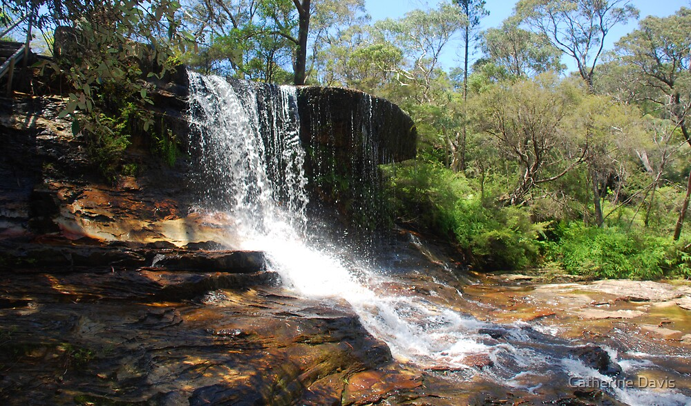 Weeping Rock, Wentworth Falls, Blue Mountains by Catherine Davis