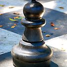 Pawn by Sarah Miller