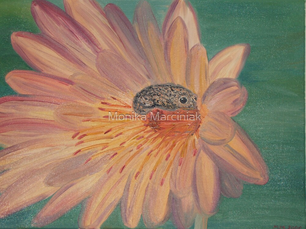 Frog on a flower by Monika Marciniak
