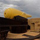 A Flippin' Big Cannon by Mark Baldwyn
