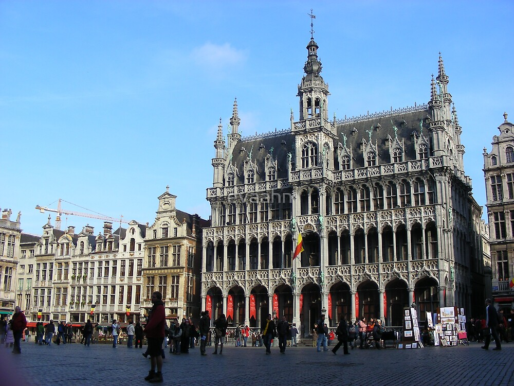 grand place in january by evaahn