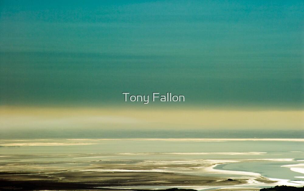 The Estuary by Tony Fallon