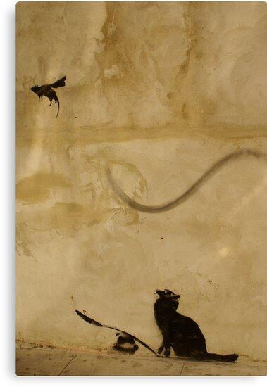 Cat vs Rat by Kiwikiwi