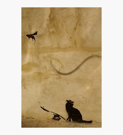 Cat vs Rat Photographic Print