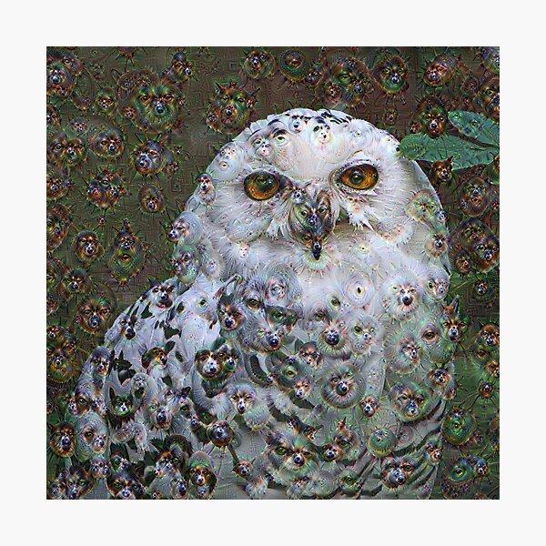 Dream Creatures, Snowy Owl 001, DeepDream (Schnee-Eule) Photographic Print