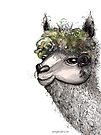 Flower alpacca by Jenny Wood
