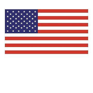 American Flag, Stars & Stripes, Pure & simple, United States of America, USA by TOMSREDBUBBLE