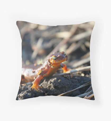 California Newts 4 Throw Pillow