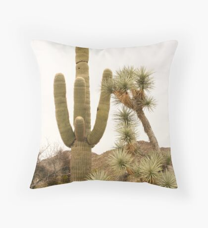 Along Alamo Road, AZ Throw Pillow