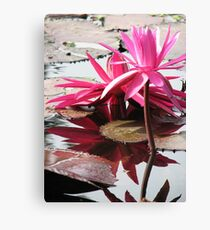 Attractions  Canvas Print