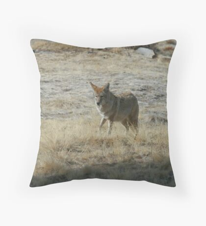 Coyote 2 Throw Pillow