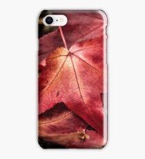 Autumn Leaves 1 iPhone Case/Skin