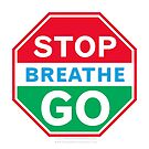 Stop, Breathe, Go! by Tieras